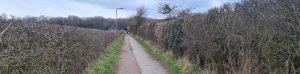 Moore Lane